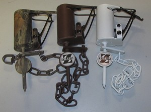 Z - Traps  Dog Proof coon Traps